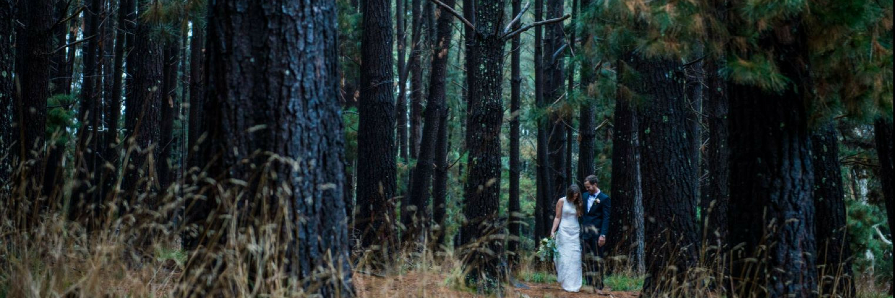 Weddings at Woodhouse Pine Forest